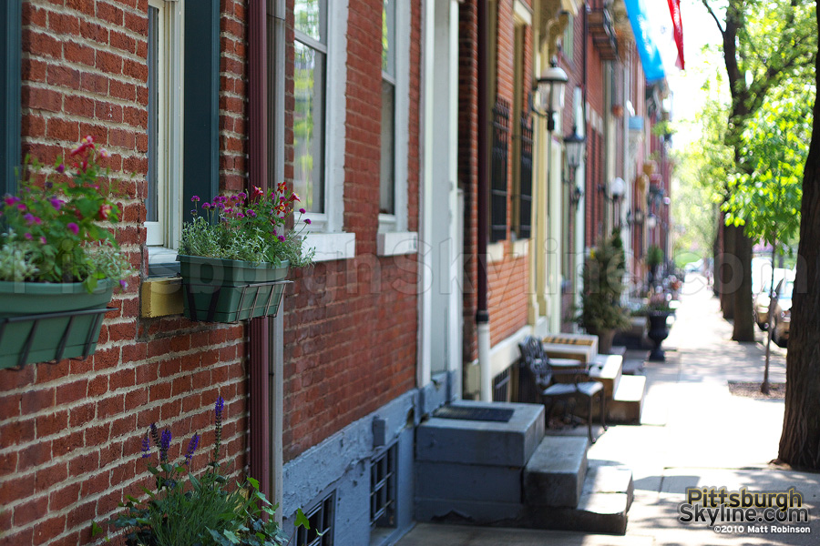 Window planter box along the Mexican War Streets