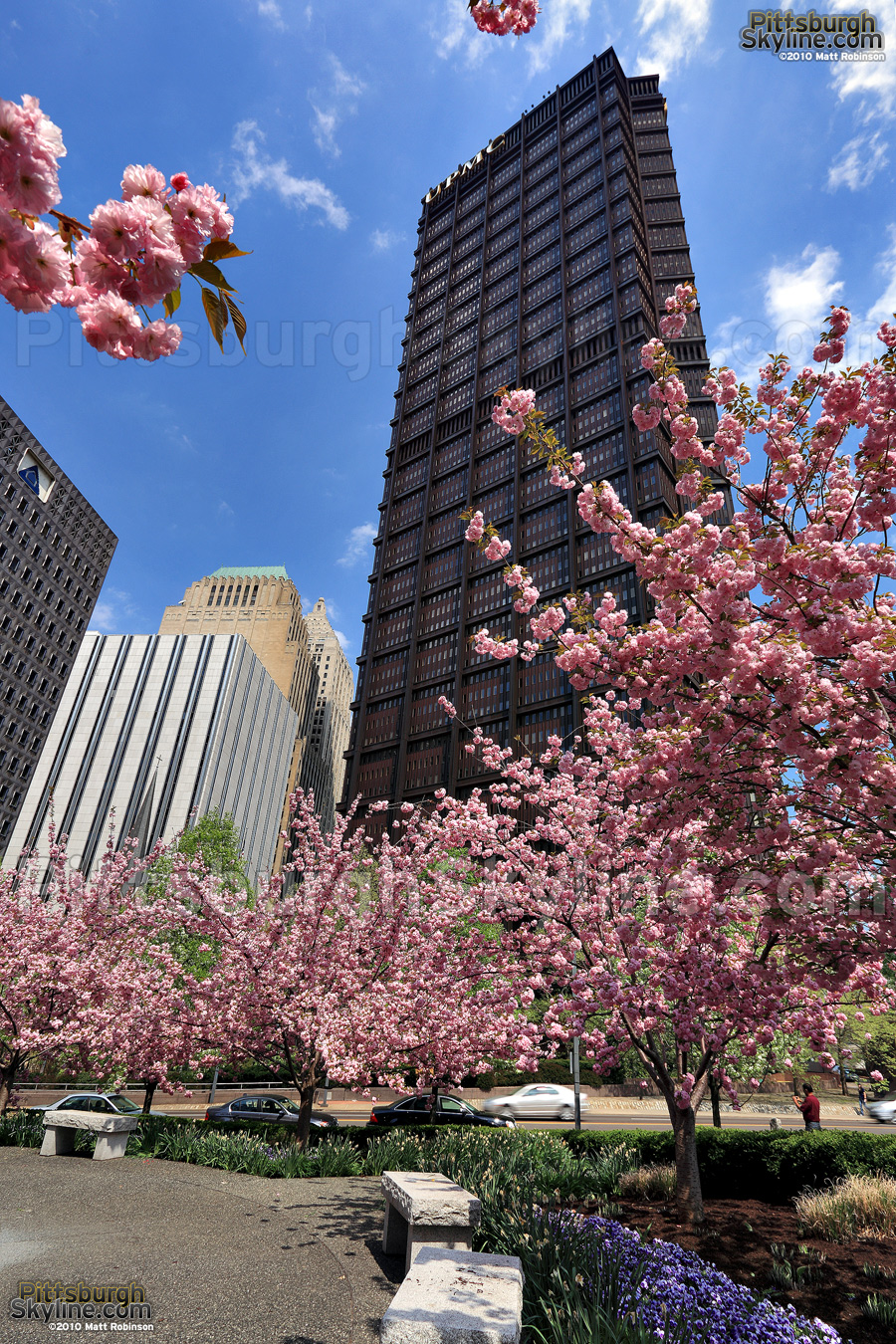 Blossoms with USX Tower