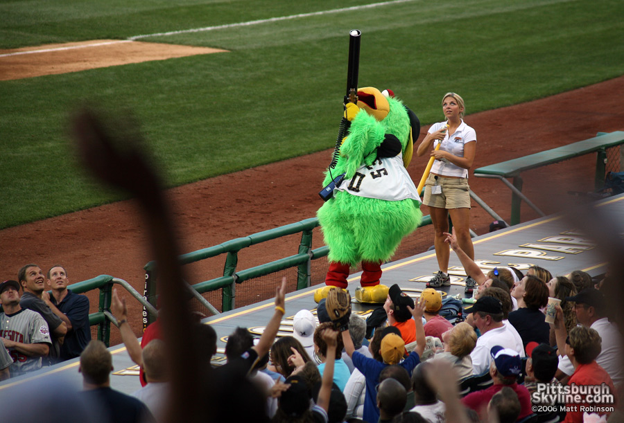 Pirate Parrot fires hot dogs into the crowd