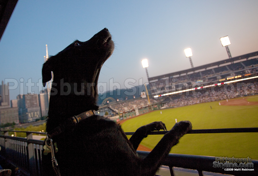 Beau vents her frustration with the Pirates' losing!